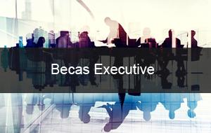 Becas Executive